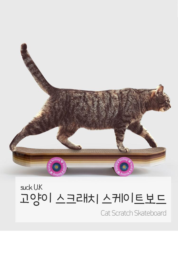 썩유케이(SUCKUK) 스케이트보드 고양이 장난감 캣 스크래쳐